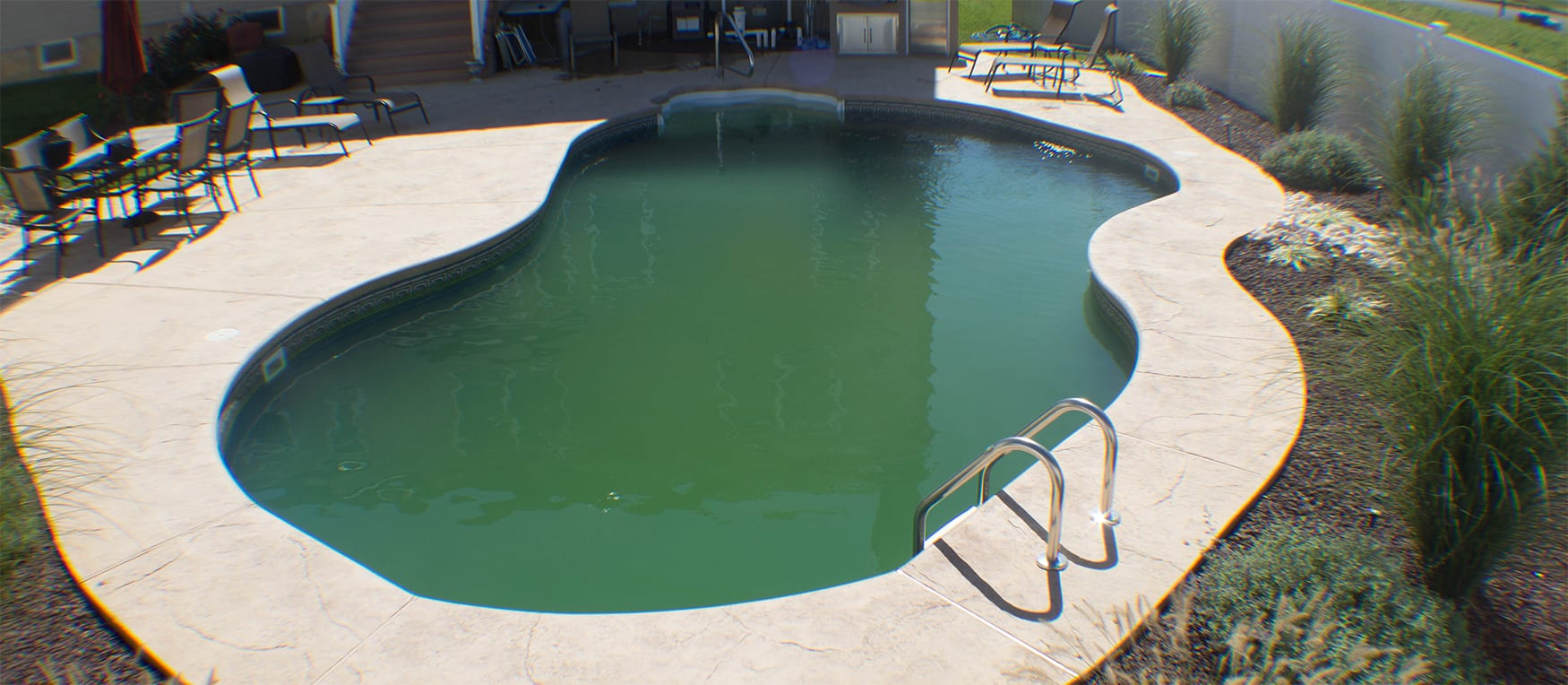 Green Algae filled inground pool
